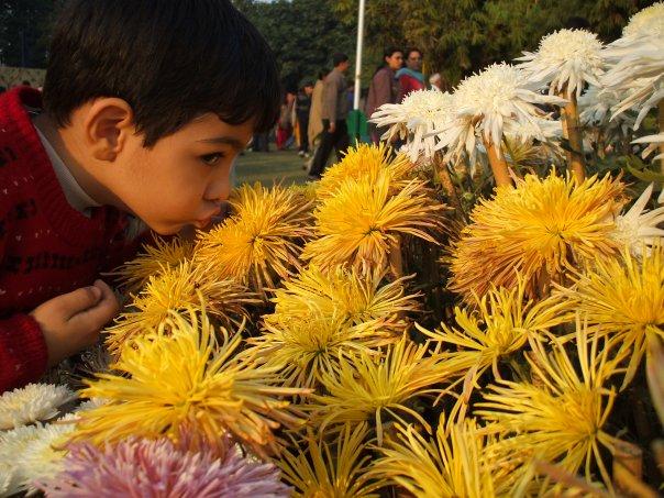 amrita pritam poetry waaris shah poem - try giving a chance to communities that love